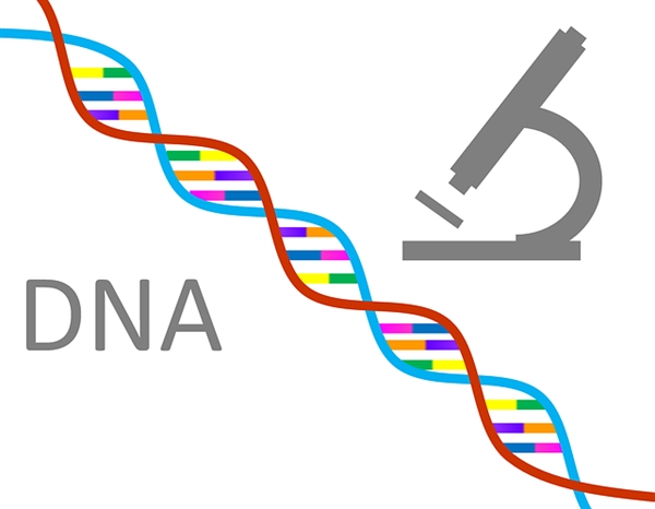 Reclaim Your DNA and Beat Disease